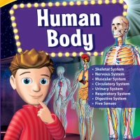 human-body-1410423436-jpg